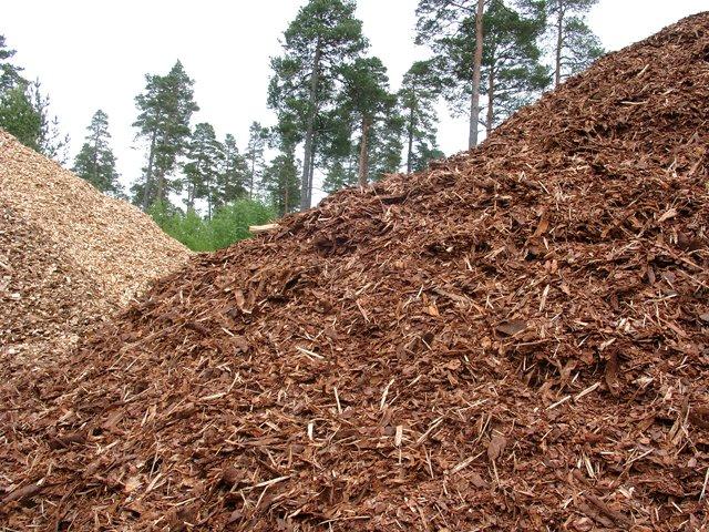 La Junta promociona el uso de la biomasa forestal en el sector ganadero de la Comunidad