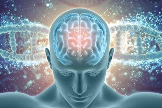 Test de inteligencia: 5 pruebas y preguntas inéditas