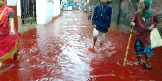[VÍDEO] Los terroríficos ríos de sangre que surcan Bangladesh en la fiesta del islam
