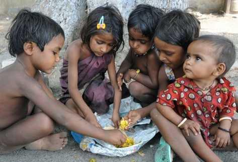 Congreso internacional Pobreza, hambre y alimentos emergentes