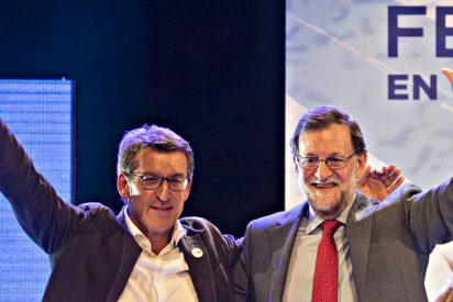 El sondeo 'secreto' de Génova da hoy al PP 40-41 escaños en Galicia y 10 en el País Vasco