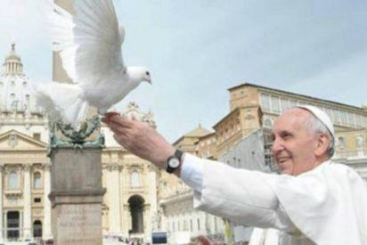 """Francisco invita a """"rezar de rodillas al Dios de la paz"""" hasta """"sentir vergüenza de la guerra"""""""