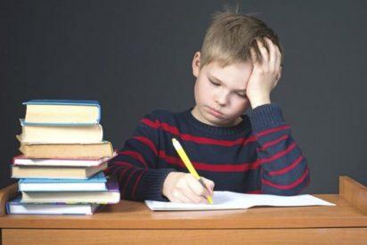 La Junta se posiciona en contra de suprimir los deberes porque crean hábitos de estudio