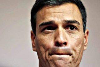 La sexta derrota seguida del PSOE de Pedro Sanchez