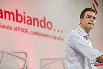 "'Nostradamus Sánchez': ""He vuelto a la política para liarla"""