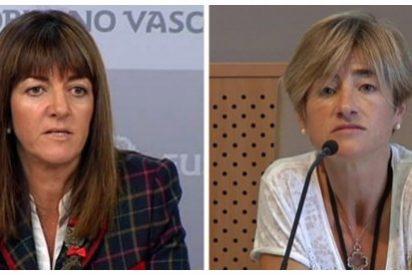 El PNV gana con holgura, Podemos no consigue dar el 'sorpasso' a Bildu y batacazo del PSE