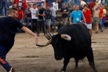 """""""No es el Toro de la Vega. El objetivo final es acabar con las corridas, con la caza y con la pesca"""""""
