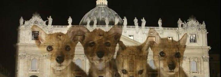 """""""Julia y el lobo"""": las víctimas de abusos reciben el abrazo del Papa"""