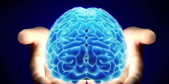El impresionante nexo entre el cerebro humano y ancestros parecidos a peces