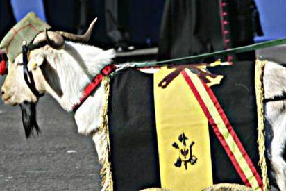 ¡Españoles!: Pepe, la cabra de la Legión, ha muerto