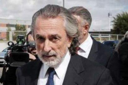 'Don Vito' Correa se confiesa seguidor del Atleti y de izquierdas