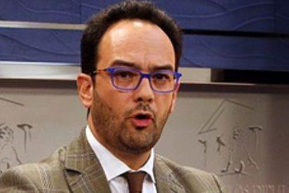 ¿Qué ha pasado con el arrogante Antonio Hernando del '17 veces no a Rajoy'?