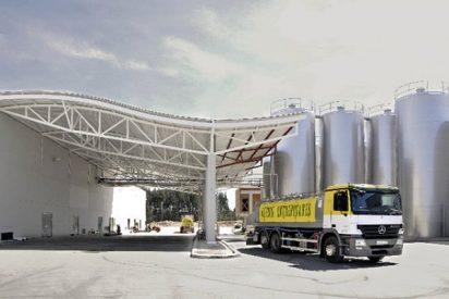 El sector quesero goza de una gran salud en Castilla y León