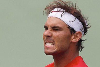 Nadal y Ferrer bajan al quinto y decimoquinto puesto del ranking de la ATP