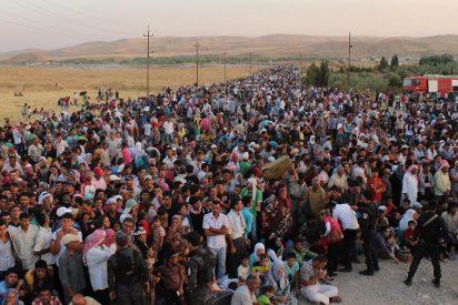 Emigrantes, refugiados, desplazados