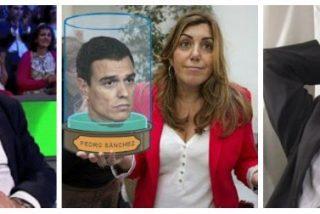 Twitter se cachondea del decapitado Sánchez