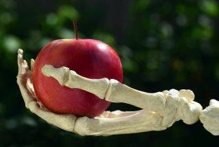 Edad: las 4 principales enfermedades de los huesos