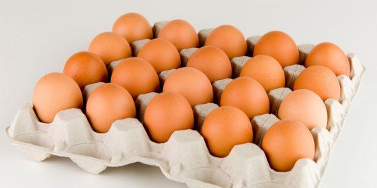 Alerta sanitaria: Retiran 75.000 huevos 'bio' de los supermercados por altos niveles de dioxina