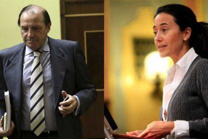 Pujalte y Torme ante el Juez como investigados