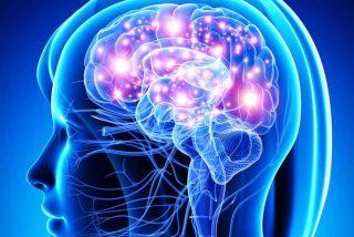 Consiguen rescatar recuerdos olvidados a través de la estimulación magnética