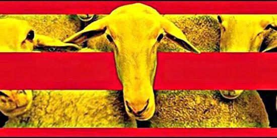 Así adoctrinan a los niños en un colegio catalán los sectarios del independentismo