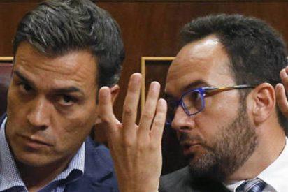 La venganza: brutal 'rejonazo' de Antonio Hernando a Pedro Sánchez