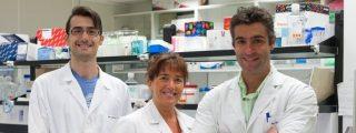 Científicos españoles diseñan nuevas moléculas contra el melanoma