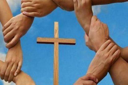 Volver a Jesucristo para renovar la Iglesia