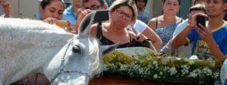 [VÍDEO] El caballo que llora desconsolado sobre el ataúd de su querido dueño