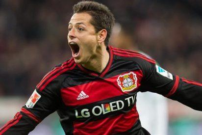 Bayern Leverkusen querría vender a 'Chicharito' por su actitud egoísta