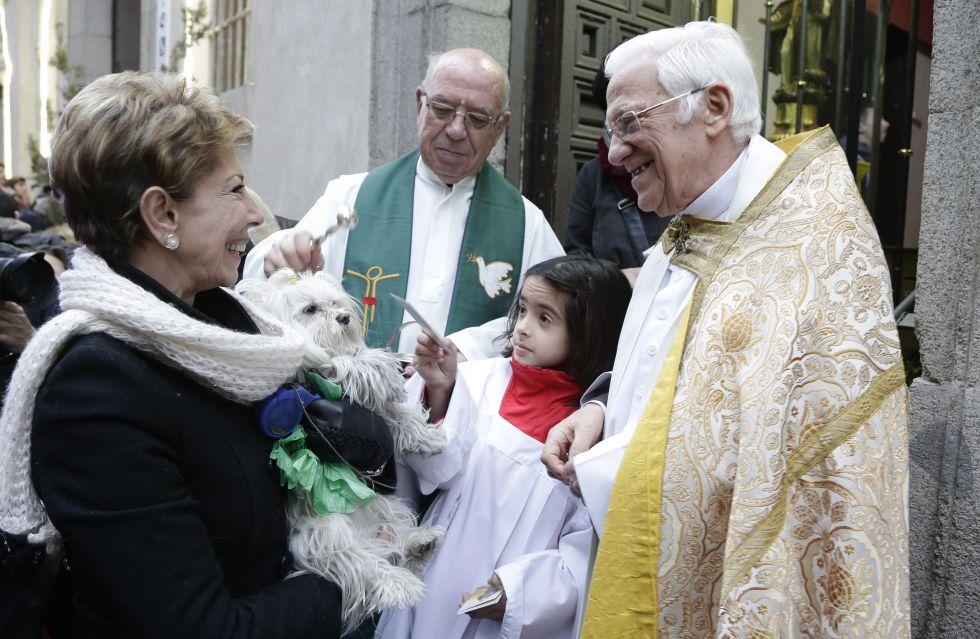 Fiestas del patrón de los animales en la iglesia de San Antón