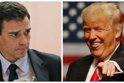 A Pedro Sánchez le meten un 'zasca' de miedo por atreverse a retar a Trump