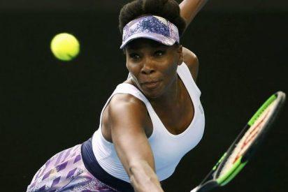 Un comentarista de ESPN compara a la tenista Venus Williams con un gorila y lo fumigan