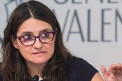 Los chanchullos de Mónica Oltra: 107 contratos ilegales