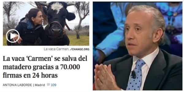 El cinismo de Change.org: salvan a 'la vaca Carmen' pero sacrifican a Eduardo Inda