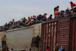"""Obispos latinoamericanos y estadounidenses, contra Trump: """"El muro es signo de debilidad de quien lo construye"""""""