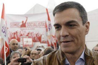 Pedro Sánchez: la peor opción para el PSOE y la más desastrosa para España