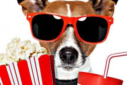 El cine... cosa de hombres