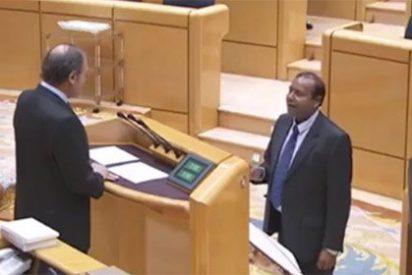 El 'club de la comedia': el nuevo senador de ERC, incapaz de acatar la Constitución