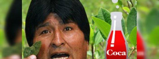 Evo Morales amplía la superficie del cultivo de coca:
