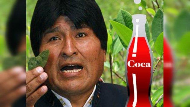 """Evo Morales amplía la superficie del cultivo de coca: """"Queremos coca de por vida"""""""