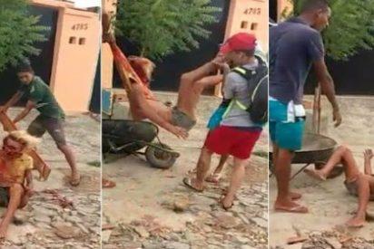 Brasil: Una banda de sádicos miserables tortura y mata a un travesti que suplica piedad