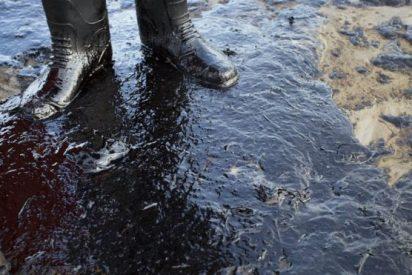 Adiós a los vertidos de crudo; inventan una esponja que absorbe el petróleo