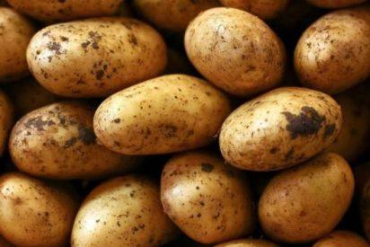 ¿Es posible sobrevivir comiendo sólo patatas?
