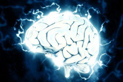 Todo el contenido de internet puede ser almacenado por un cerebro humano
