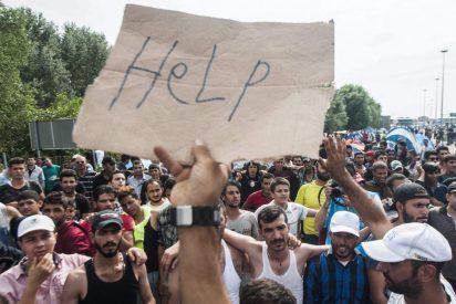 """Cristianos franceses abren un """"corredor humanitario"""" desde el Líbano"""