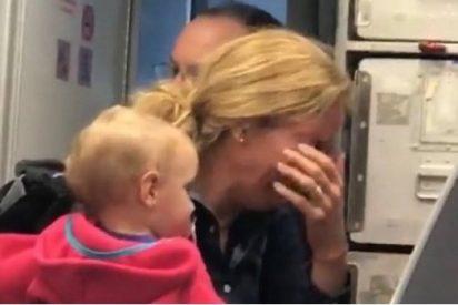 Otra bronca en un avión; esta vez en American Airlines