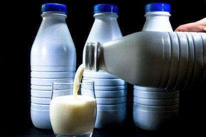 Todo lo que necesitas saber sobre la nueva leche de larga duración