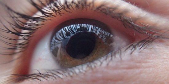 Científicos dan con la clave para que los ciegos vuelvan a ver