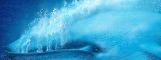 Llega a Brasil la terrorífica 'ballena azul': un juego que lleva a los jóvenes al suicidio